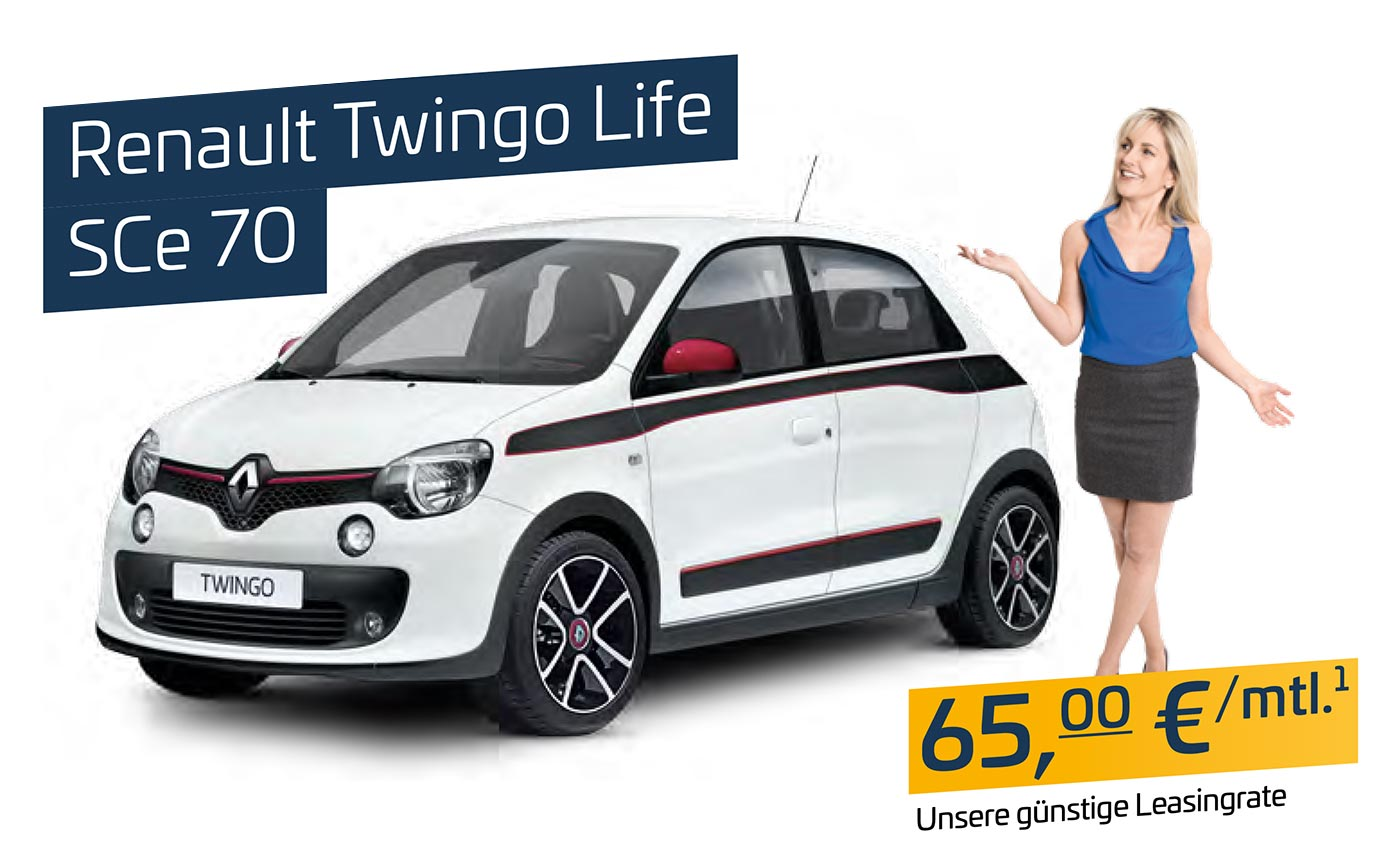 Renault Twingo Pflegedienst