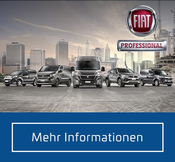 Fiat Transporter Angebote