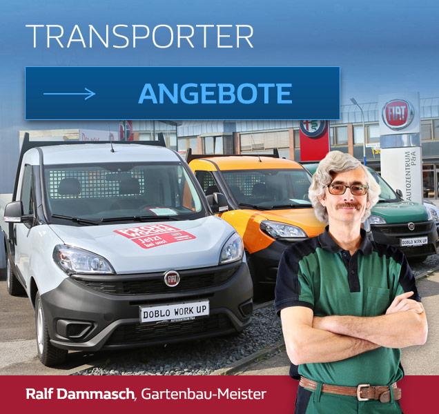 Ralf Dammasch empfiehlt Fiat Transporter von P&A