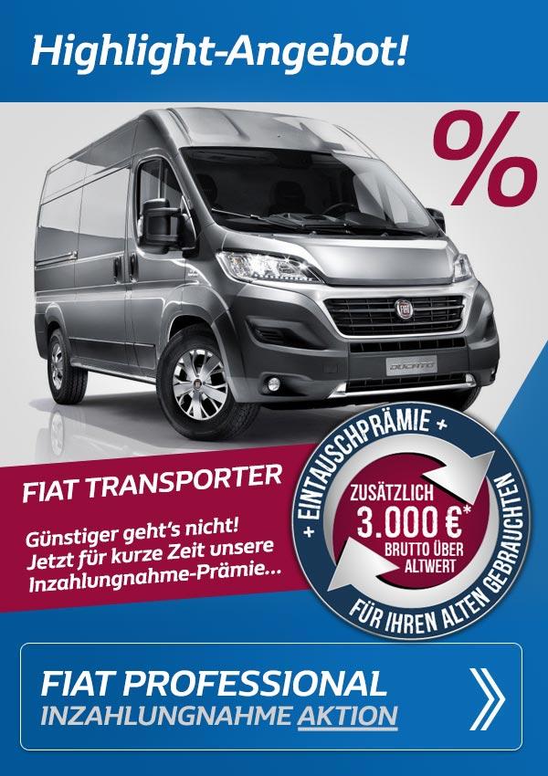 Fiat Transporter im Angebot