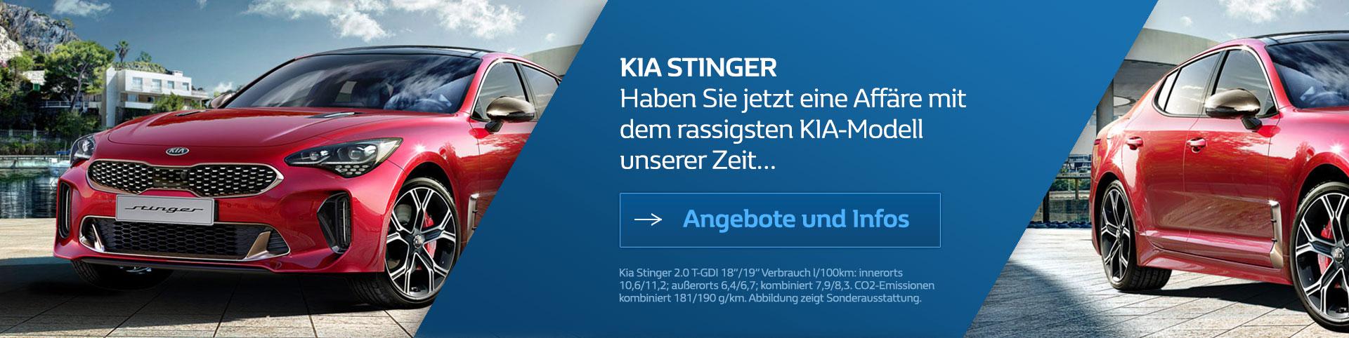 KIA Stinger 2017 vom Autozentrum P&A