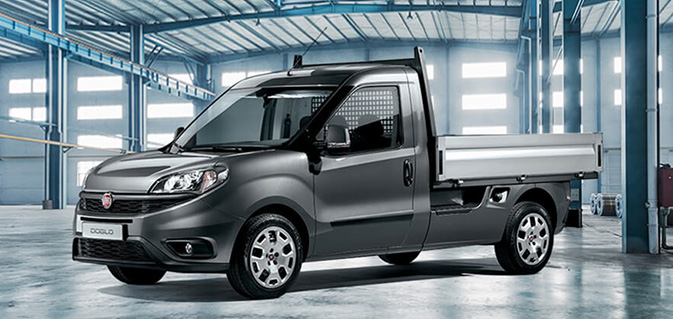 FIAT PROFESSIONAL Doblo-Cargo    Work up