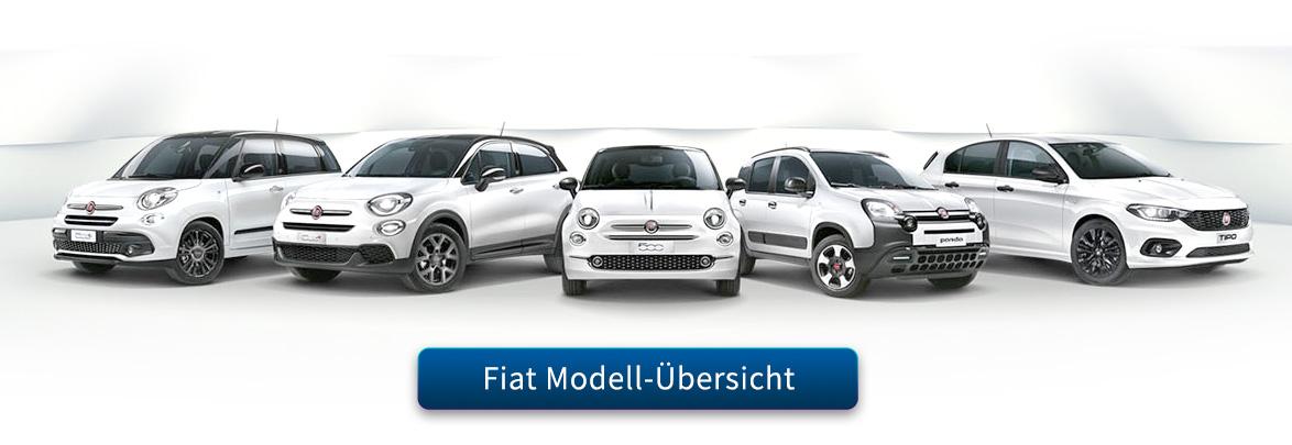 Fiat Fahrzeuge von Preckel