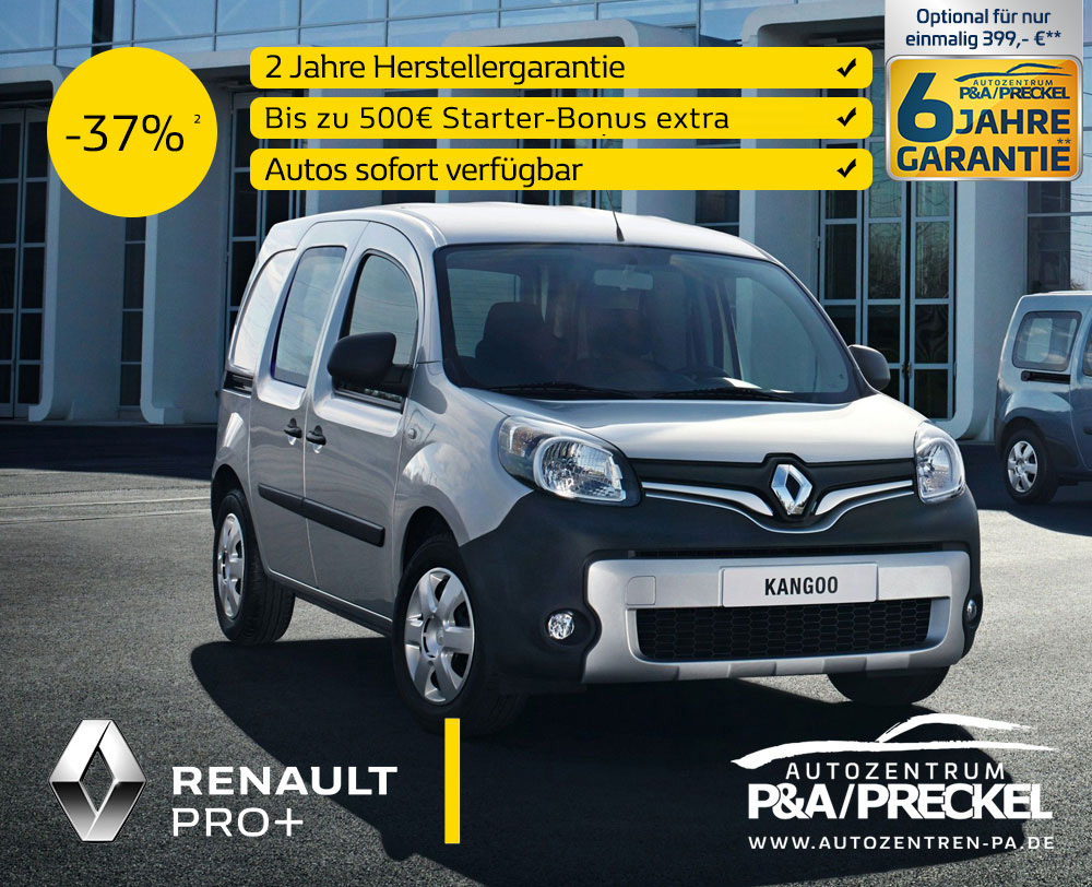 Renault Kangoo Rapid kaufen