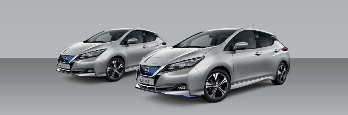 Nissan Leaf Blade Silver Metallic